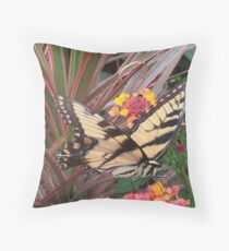 Eastern Tiger Swallowtail Glaucus Aka Tiger Swallowtail If You Like Please Purchase
