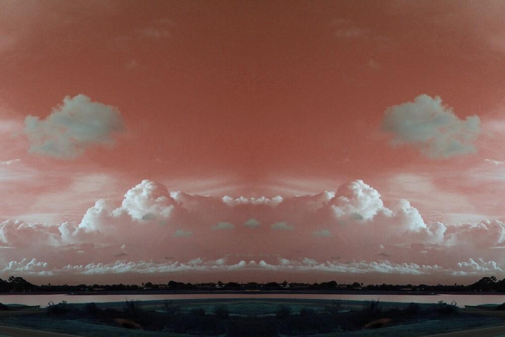 Wet Sky  by Willard's Bucklip