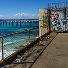 Catherine Hill Bay Jetty 2 by Werner Padarin