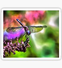 Dragonfly In Green and Blue Sticker