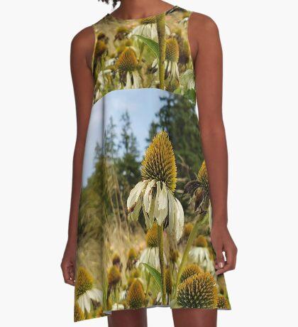 September park. II A-Line Dress