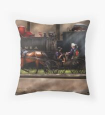 You got to love Lancaster Throw Pillow