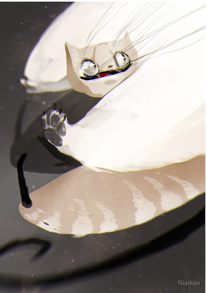 Fly kitten fly! by Niarkan