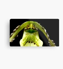 Captain Trips - Orchid Alien Discovery Metal Print