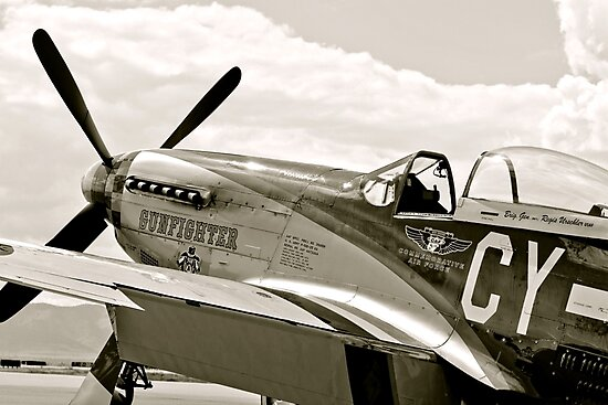 P-51 Mustang Fighter Plane by Amy McDaniel