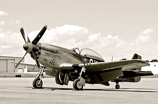 P-51 Classic Mustang WW2 Fighter Plane by Amy McDaniel