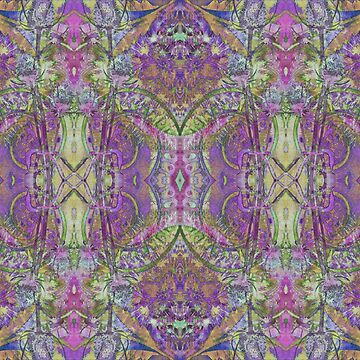 psychedelic teasels by kittymitch