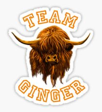 Team Ginger Scottish Highland Cow Sticker
