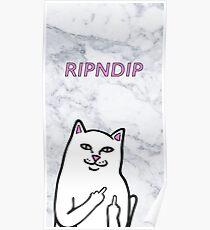 RIPNDIP CAT Poster