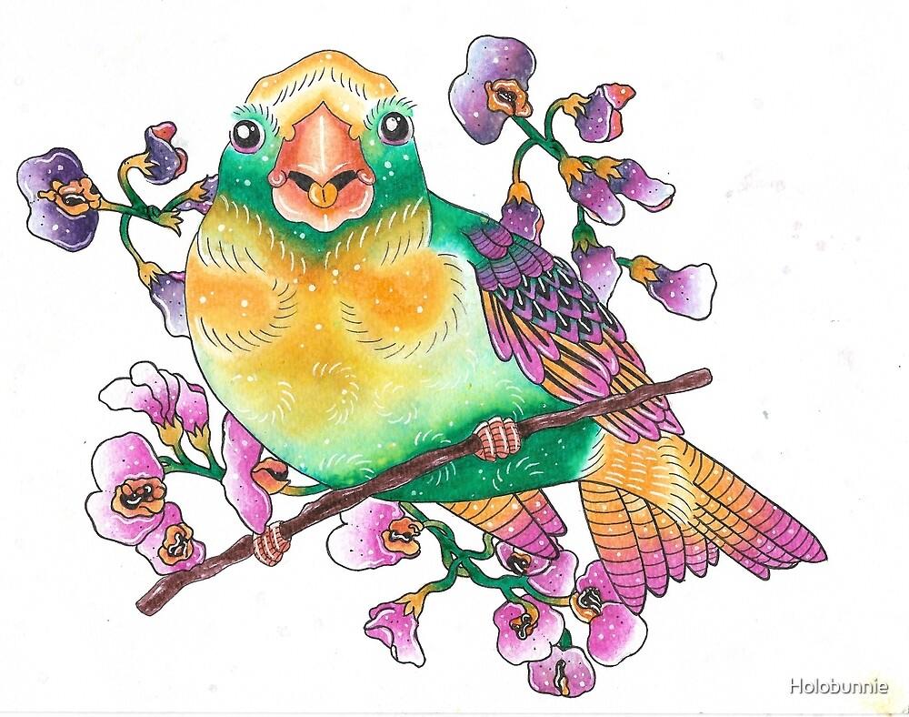 Rainbow Bird II by Holobunnie