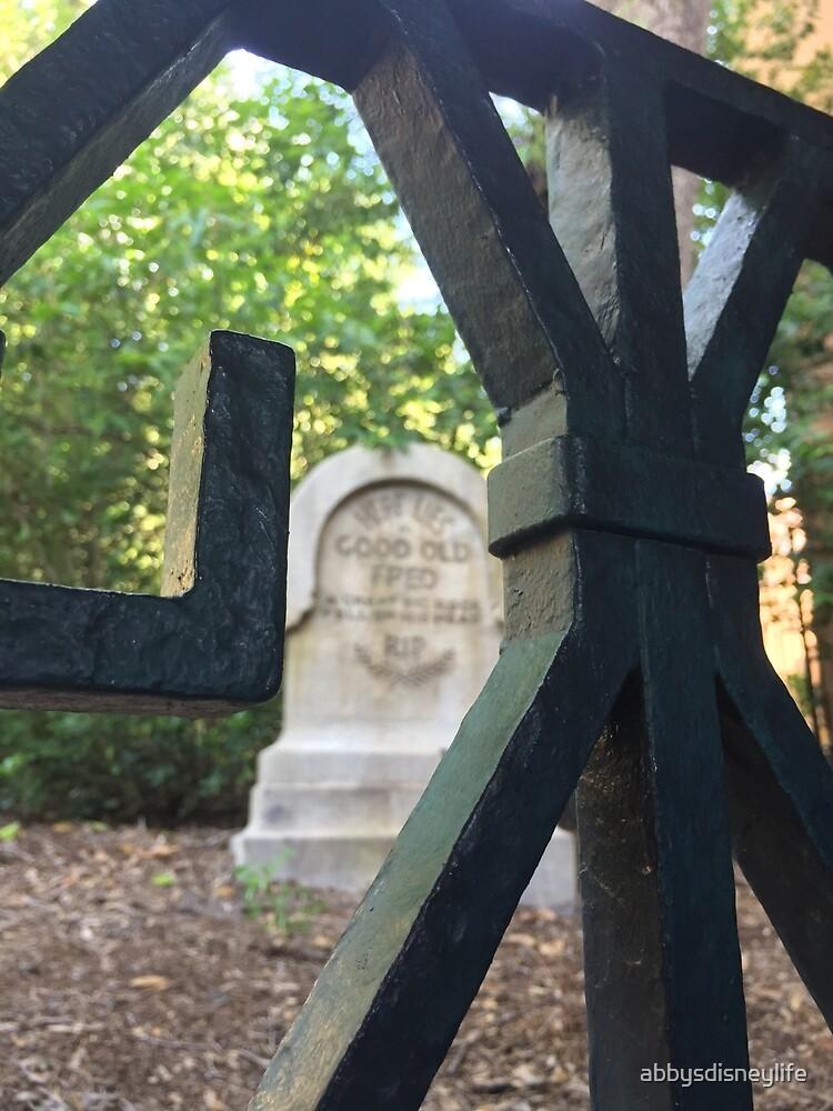 Haunted Mansion Graveyard by abbysdisneylife