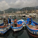 Fishing Boats in Salerno by Barbara  Brown