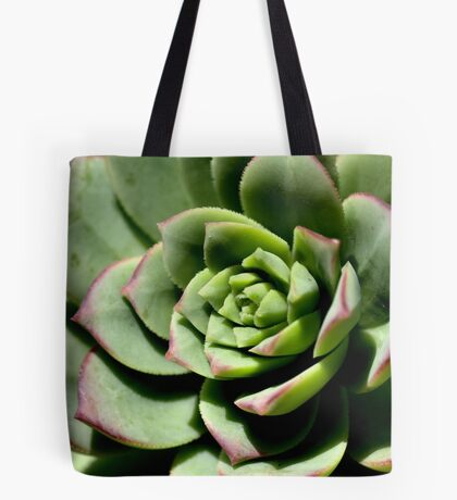 Shadows of Cactus Tote Bag