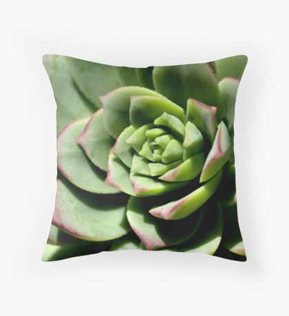 Shadows of Cactus Throw Pillow