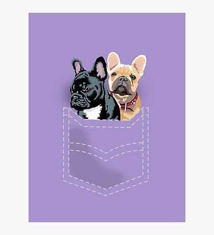 Diesel and Brie in pocket Photographic Print