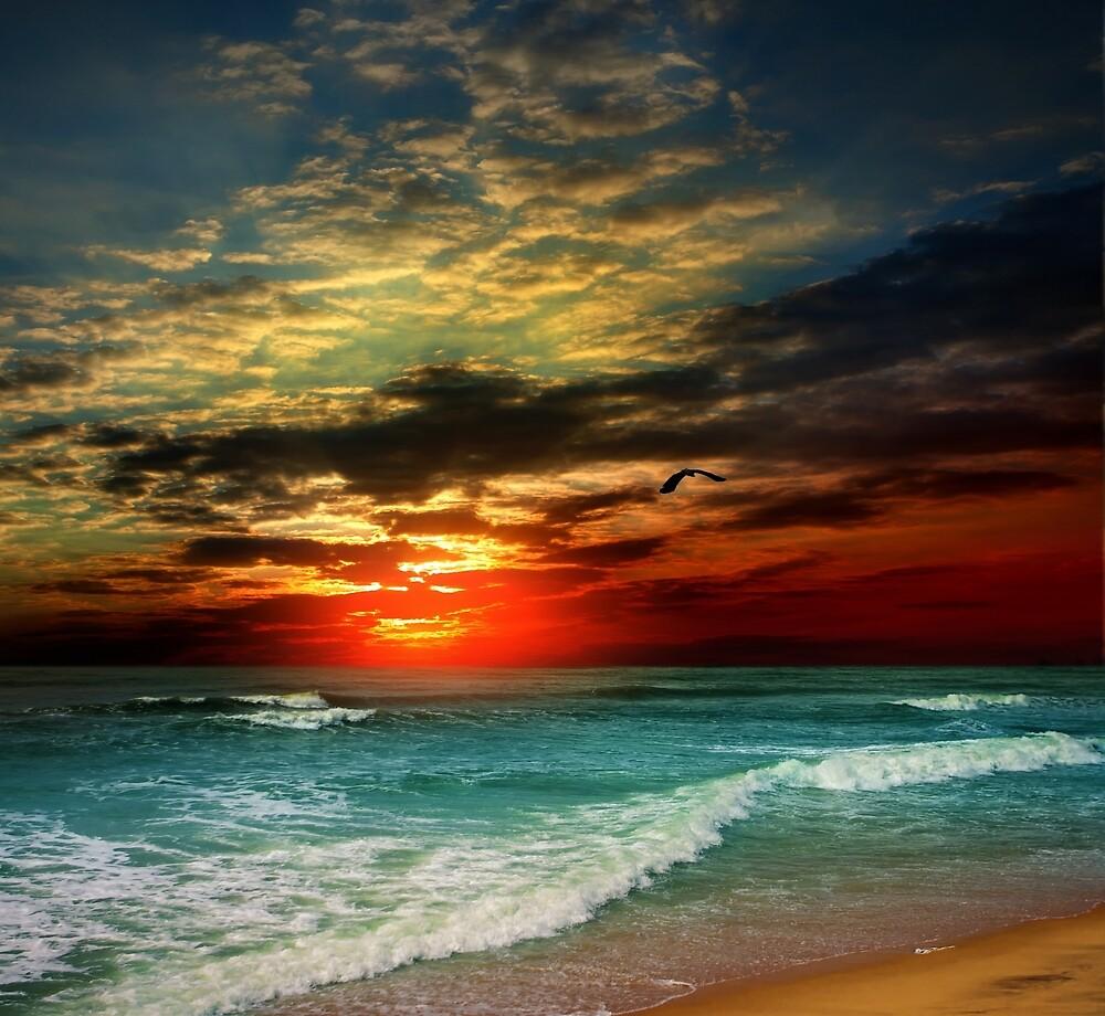 Beach Sunset by johnsonkarlena