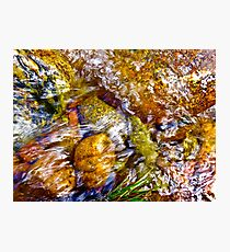 Gore Creek Abstract 1 Photographic Print