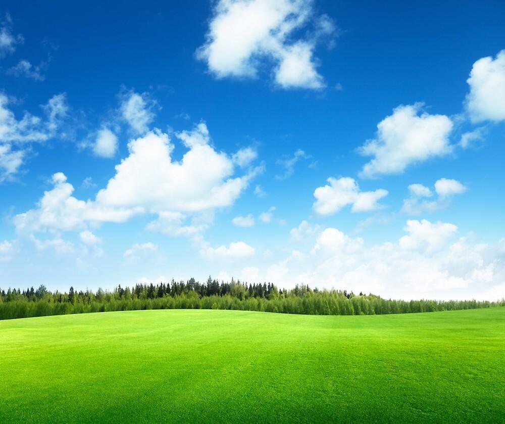 Green Land by johnsonkarlena
