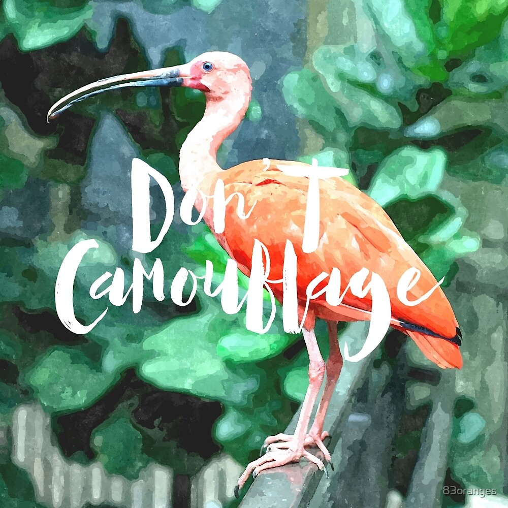 Don't Camouflage by 83oranges