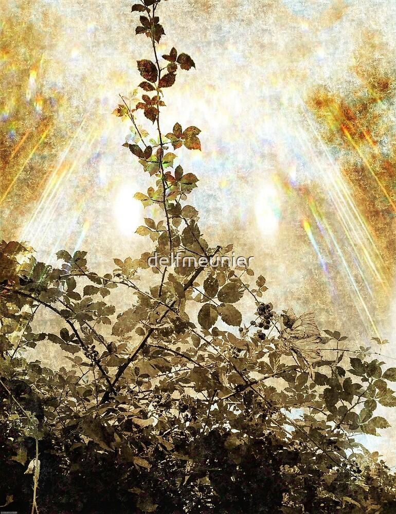The bramble bush fairy by delfmeunier
