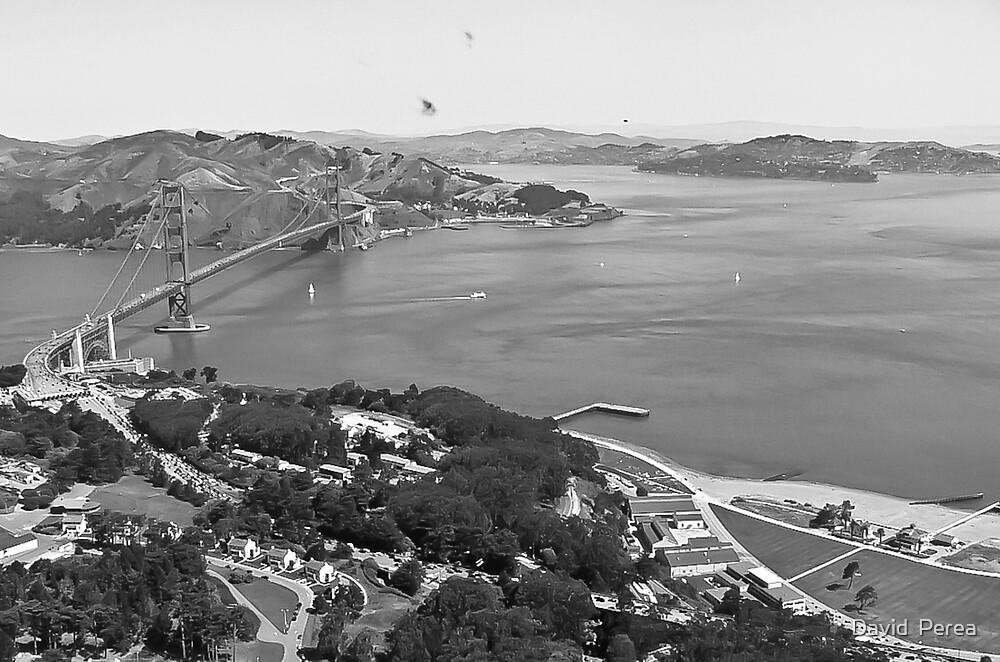 Golden Gate Blanco y Negro  by David  Perea