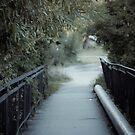 Bridge by samsheff