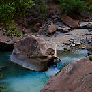 A Creek in Zion by samsheff
