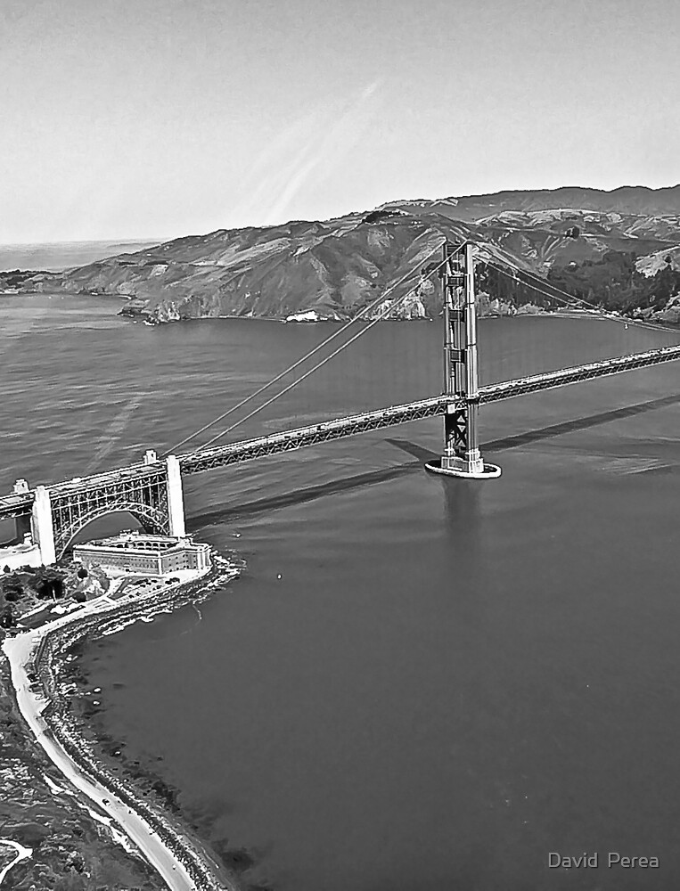 Aerial Black and White California SF  by David  Perea