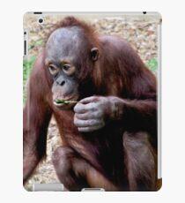 Baby orangatang eating iPad Case/Skin