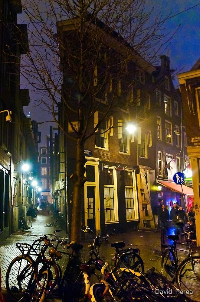 Amsterdam Midnight Dream  by David  Perea