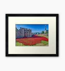 Poppies in the Moat 2 Framed Print