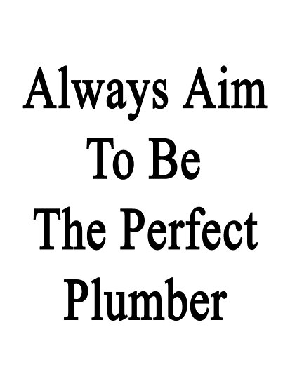 Always Aim To Be The Perfect Plumber by supernova23