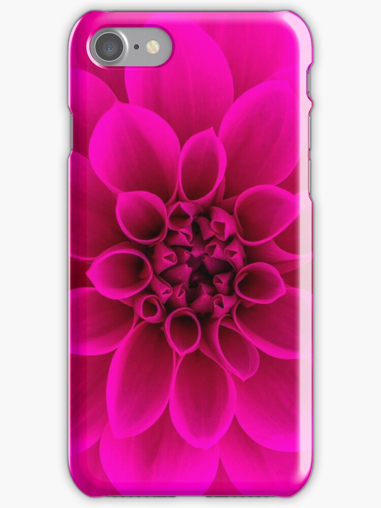 Pink Dahlia iphone case by John Velocci