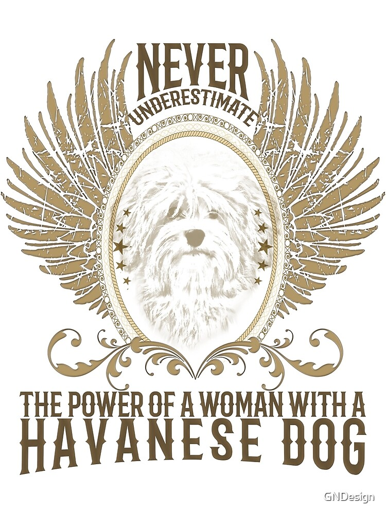 Never underestimate a women .... by GNDesign