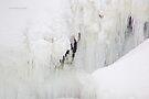 Chutes de Plaisance / Plaisance Falls by Yannik Hay