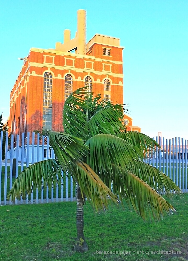baby palm and the electricity museum by terezadelpilar ~ art & architecture