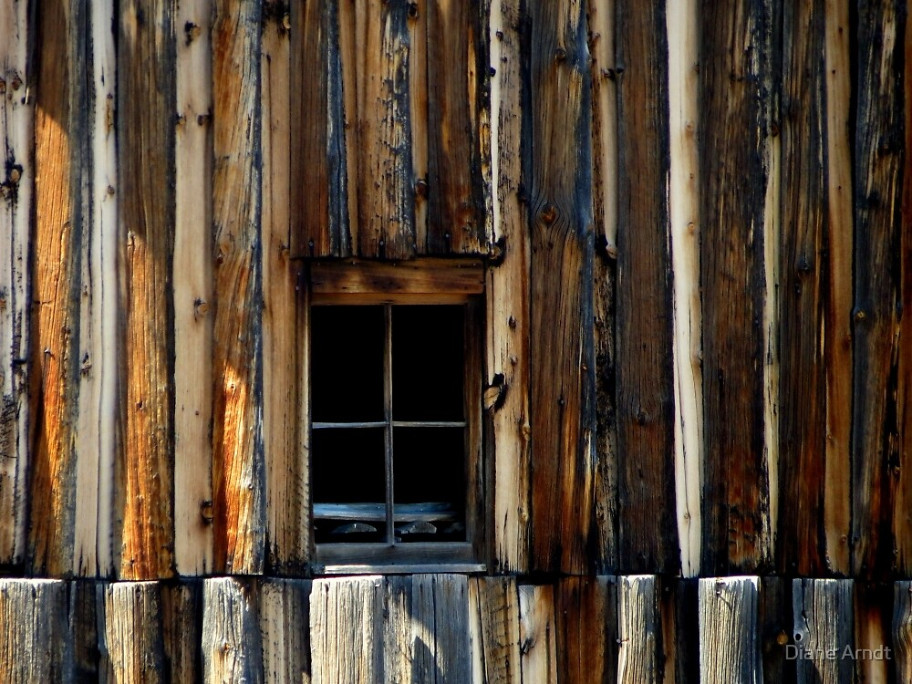 Window and Wood.....Arlington, Wyoming by Diane Arndt