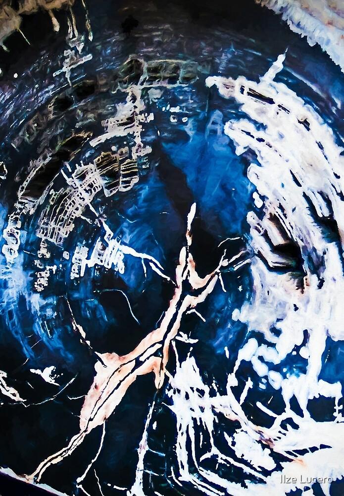 Petrified wood Art by Ilze Lucero