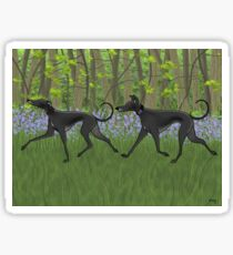 The Bluebell Wood Sticker