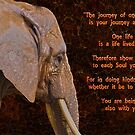 Compassion - Elephant and Quote by Skye Ryan-Evans