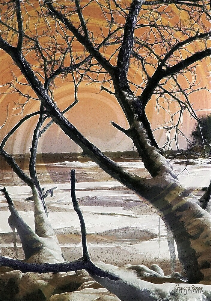 Frozen in Time 2 by Shawna Rowe