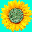 Sunflower Formation  by shhevaun