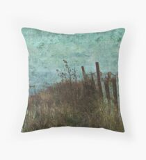 Walkabout Throw Pillow