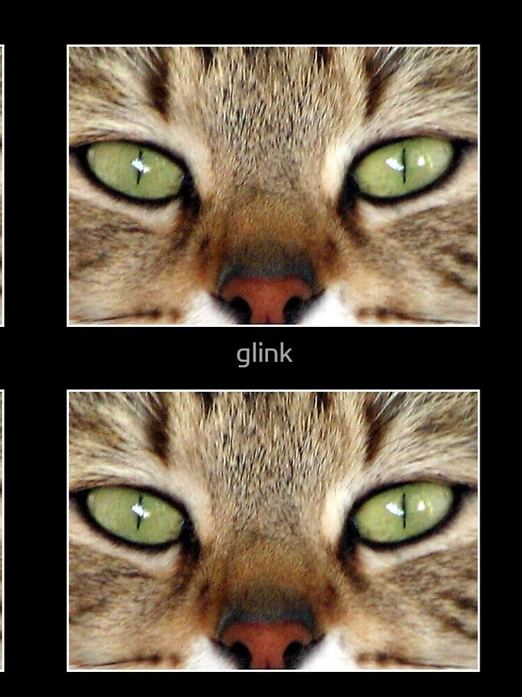Buddy by glink