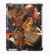 Natural Canvas iPad Case/Skin