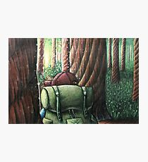 Forest of Giants Photographic Print