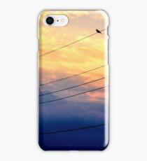 Wire Bird iPhone Case/Skin