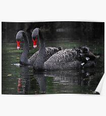 Swan Lake Poster
