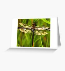 Dragonfly In Brown And Yellow Greeting Card