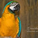 Friendship by MDossat